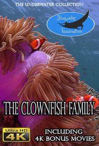 Clownfish family movie