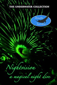 nightvision underwater dvd