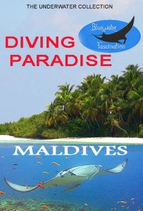 Diving Paradise Maldives