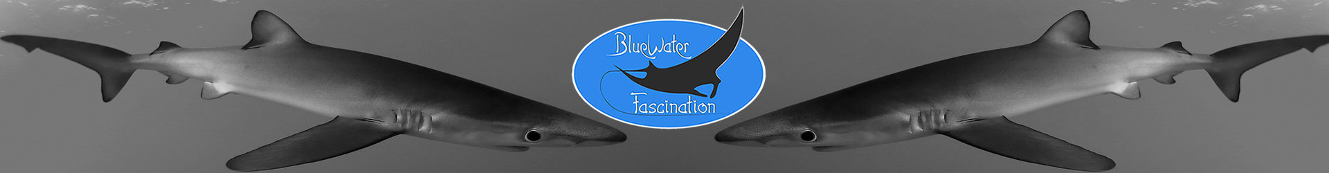 BLUEWATERFASCINATION