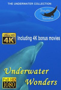 Underwater wonders movie